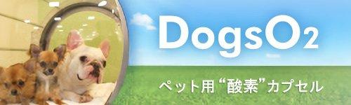 DogsO2・酸素カプセル